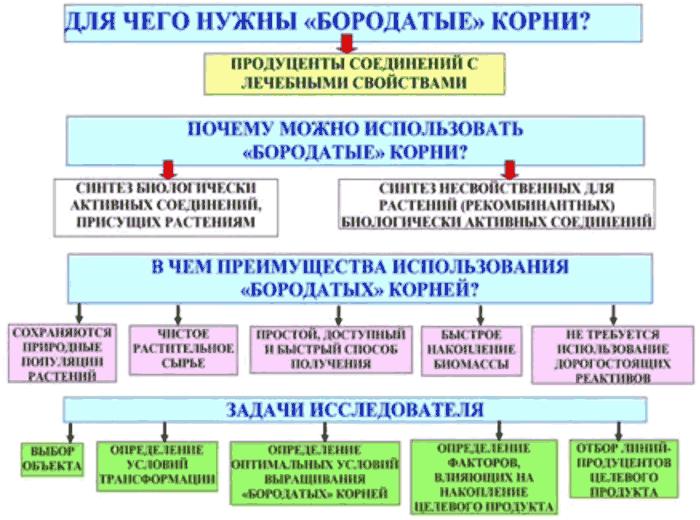 Image:Бородаті корені задачі діаграма 2017.png