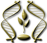 Белорусское общество генетиков и селекционеров 150x.jpg