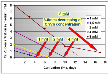 Decreasing of Cr(VI) concentration in medium.png