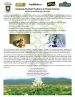 Graduate-studies-advertisement 1000x 300dpi.jpg