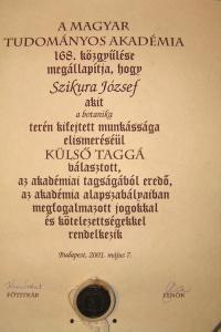 Szikura ugroska akademia 2001.jpg