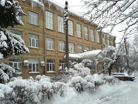 ICBGE winter 2012-12-22 14.00.05-2.jpg